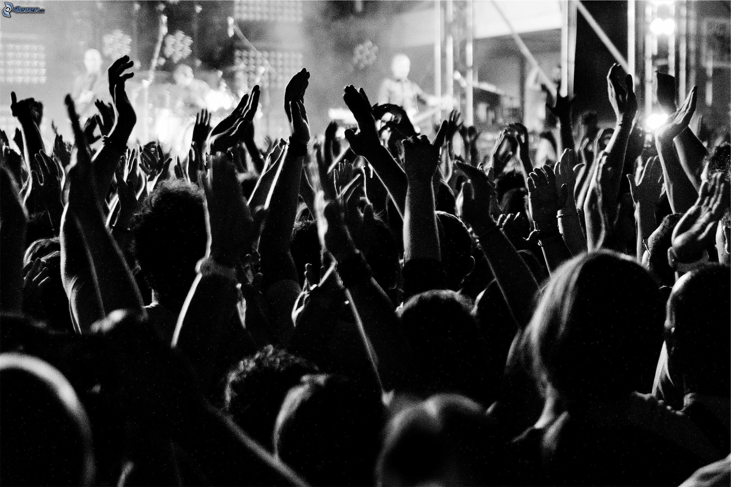 Crowd with Hands in Air
